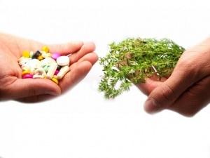 Medicamento Natural - Fitoterapia - Homeopatia